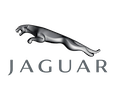 jaguar stock images